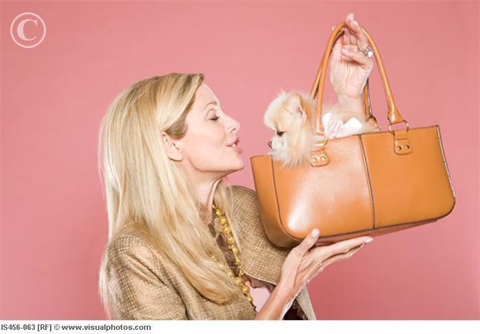 woman_looking_at_dog_in_handbag_is456-06