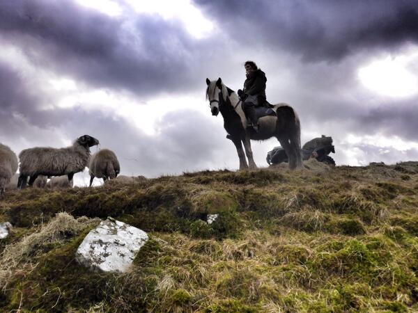 Review of The Yorkshire Shepherdess by Amanda Owen